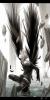 """OC Kaito: """"Je ne fais que protéger, et toi?"""""""
