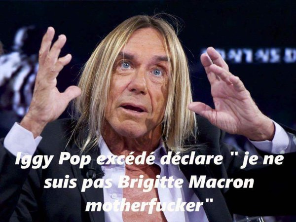 741 Iggy pop harcelé !!!