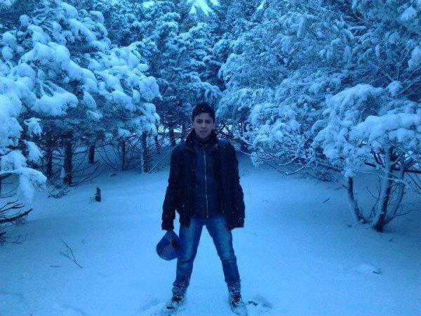 cet photo dans la neige