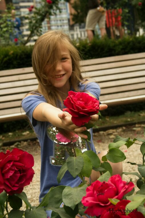 Une rose pour toi cio