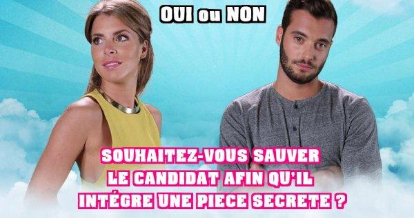Secret Story 9 : Votez dés maintenant - NOMINATION SPECIALE - Le candidat en danger, doit-il être éliminé ou intégrer une pièce secrète ?