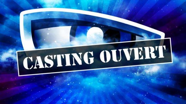 Secret Story - La saison 10 confirmée, les castings déja lancés !