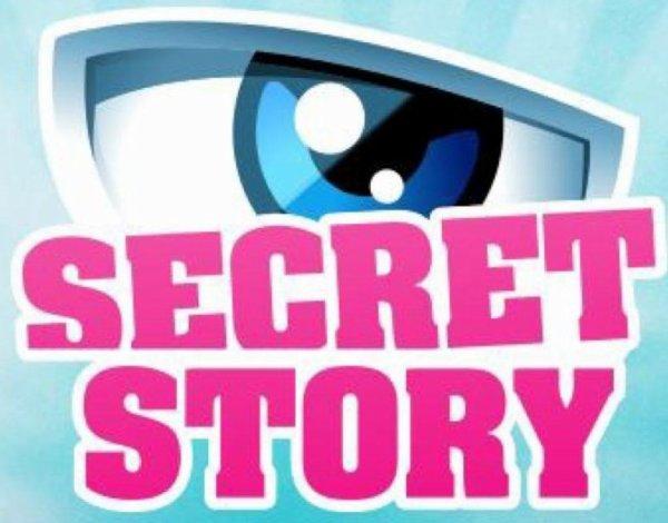 Secret Story 10 : Découvrons le secret de Damien !