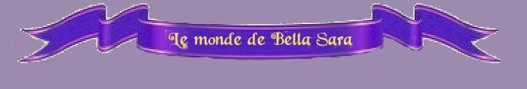 Le monde de Bella Sara / Règles du jeu