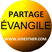 Venez visitez ce nouveau site