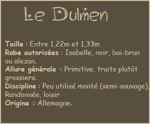 Race n°1 : Le Dülmen