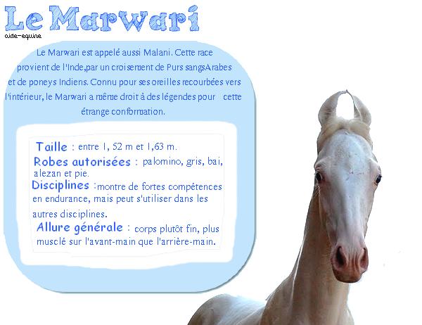 Le Marwari