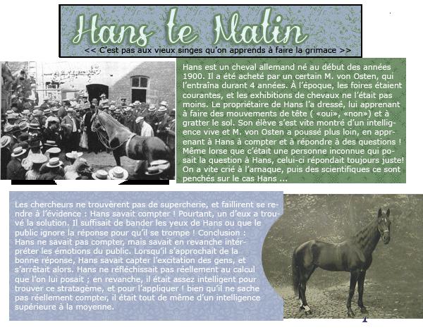 Hans le Malin
