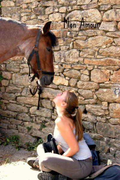 L'équitation. «Demander souvent ; se contenter de peu ; récompenser beaucoup»
