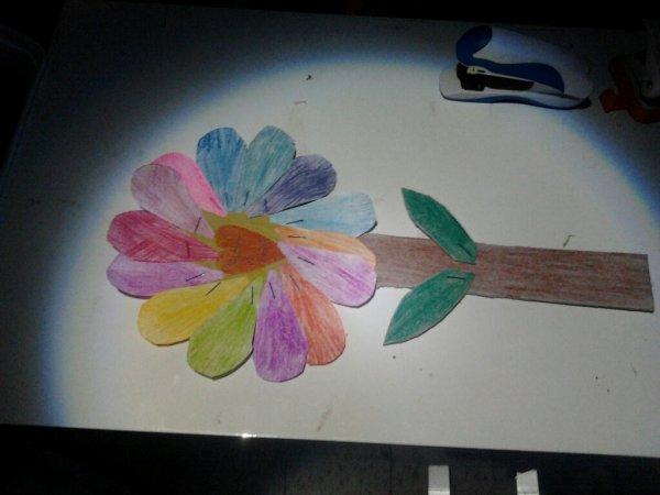 fleure pour ma cheri