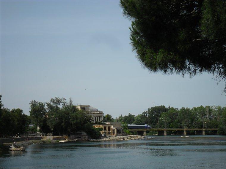 Le fleuve :L'Hérault  (juin 2014)