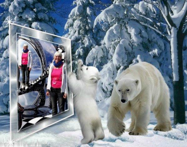 l'hiver arrive ...................
