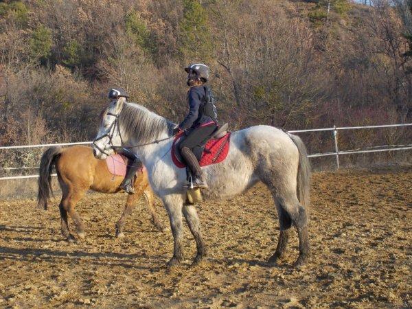 moi à cheval