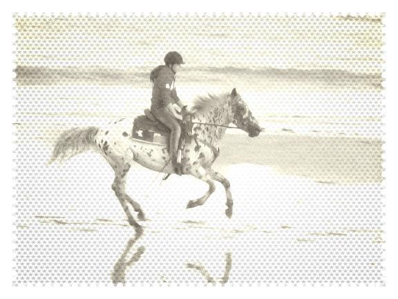 - Galop sur la plage -
