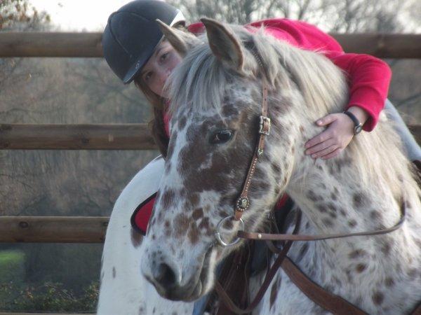 « Il n'y a pas de secret aussi iintimes que ceux d'un cavalier et de son cheval  »