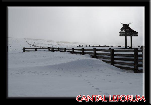 Février 2014 : Du coté du Col de Fortunier