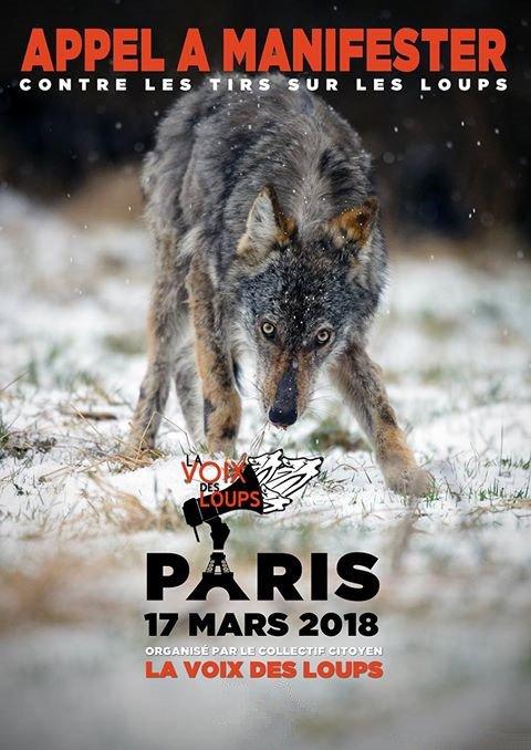 Manifestation contre les tirs sur les LOUPS - La Voix Des Loups