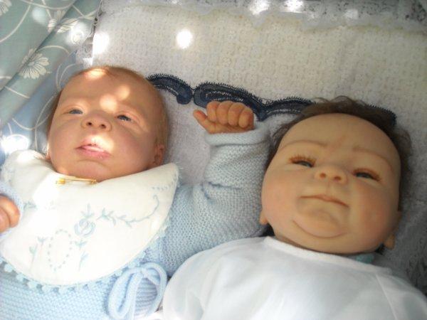 Les vacances sont terminées avec mes quatre petits enfants et c'est donc la reprise de mon blog avec mes nouveaux-nés qui essaient de prendre un peu de frais sous le bouleau pleureur....