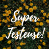 Supertesteuse