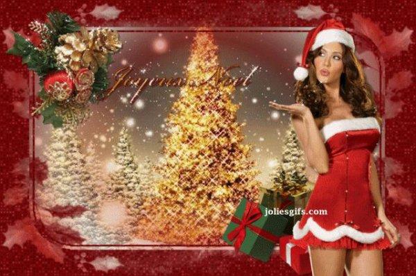 Joyeux noël et bonne fête de fin d'année a tous