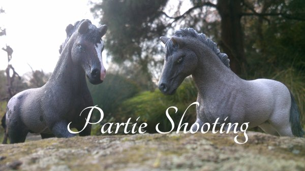Partie Shooting