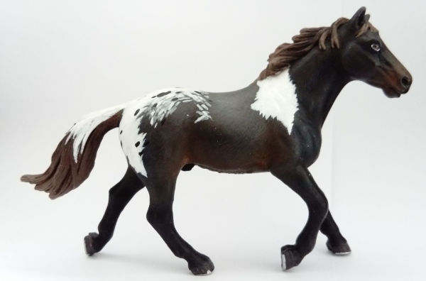 Custom de CustomHorse