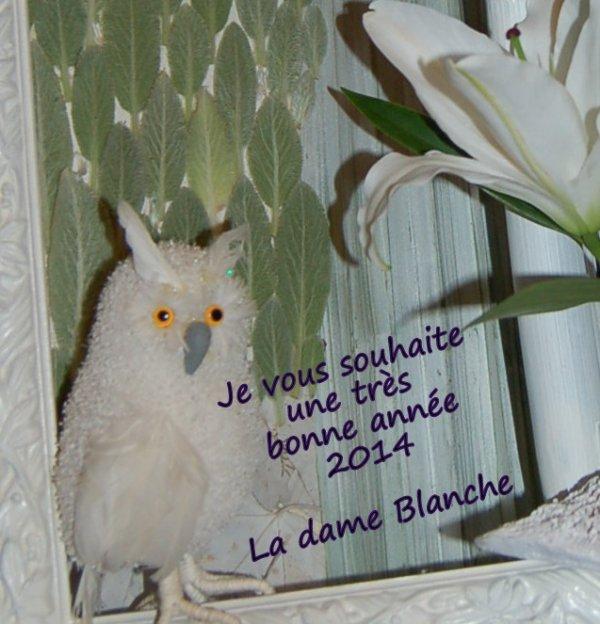 Blog de abc29 2010 page 46 blog de abc29 2010 for Dame blanche miroir minuit