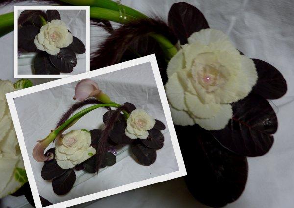 Choux - fleur  ou  fleur de choux
