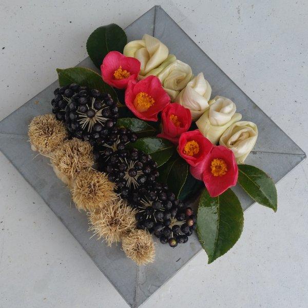 Fleurs de poireaux  et camélias ....