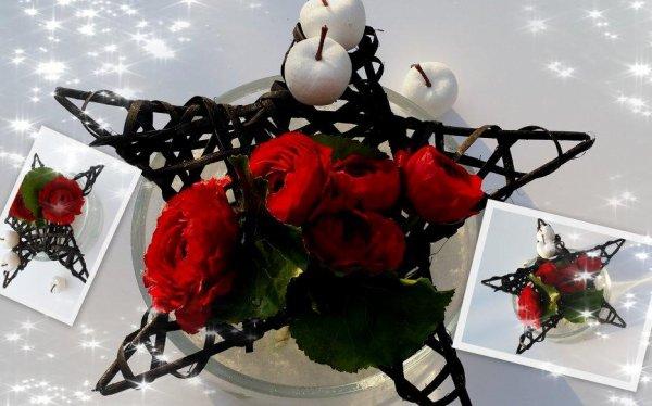 Mardi 6  décembre  :  rouge et noir