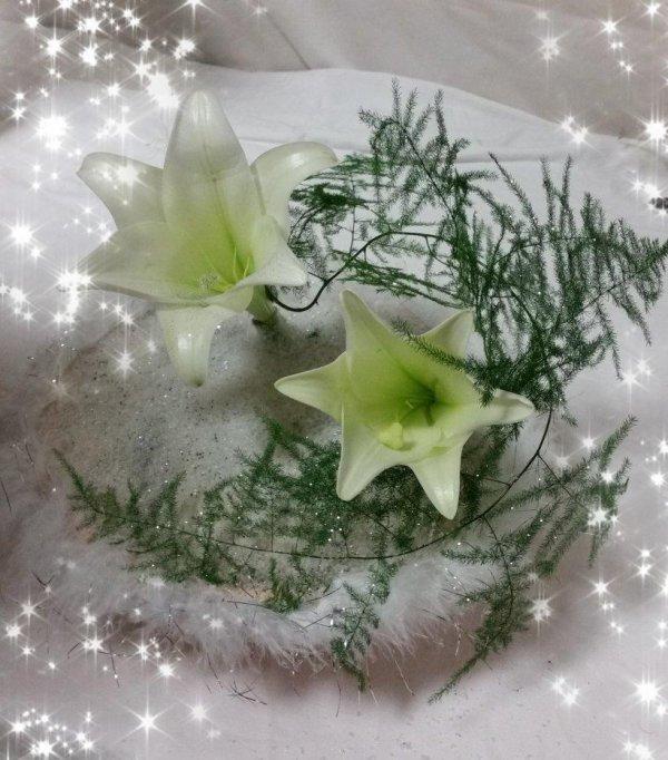 dimanche 18 décembre -  Douceur hivernale !!!!!
