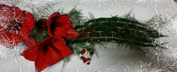 mercredi 21 décembre