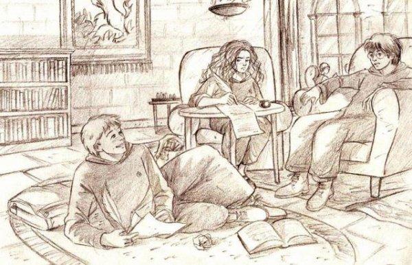La naissance de mon amour pour la lecture, en Novembre 2007 avec Harry potter