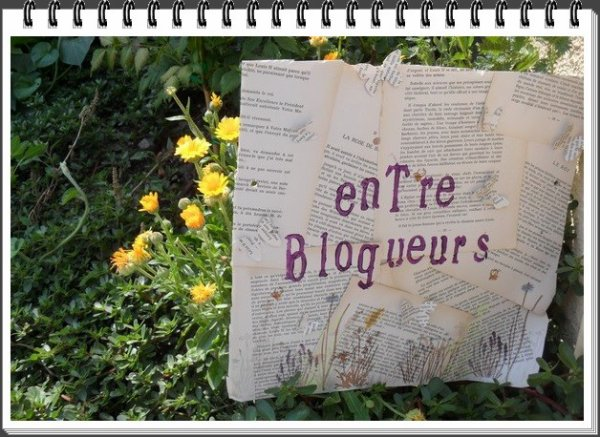 20/07/13 - Gouté/apéro entre blogueuses, lectrices et auteures (l)