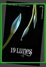 """La saga """"des Enchanteurs / des Lunes"""" de Kami Garcia & Margaret Stohl"""