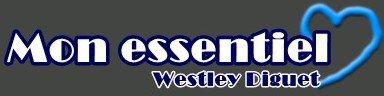 EUX - Ophélie Pemmarty & Westley Diguet