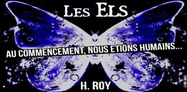 Interview - H.Roy