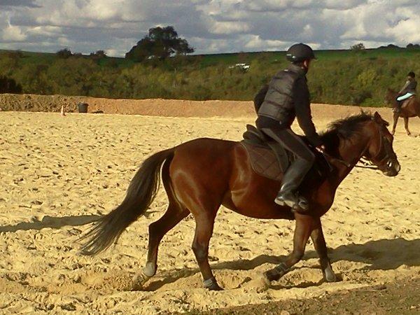 mwa cheval