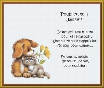 Poeme Pour Ma Chachou Daisy