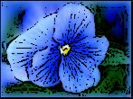 ... En ce moment Je suis très Fleur Bleue ;D ♥ PS : J'ai modifié les images à ma Façon donc Ceii ma Productiion donc Pas toushx xD