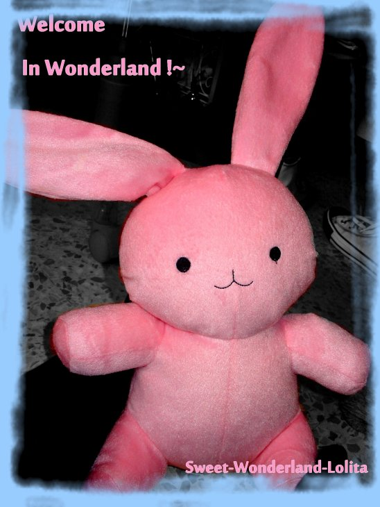 ~Welcome In Wonderland!~