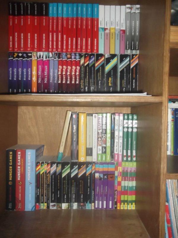 Voici un petit aperçu du début de ma bibliothéque ( dans ma chambre)