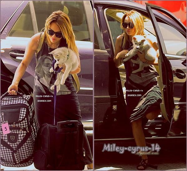 15/07/11 : Miley à l'aéroport LAX avec un nouveau petit chien , Floyd , direction le Michigan