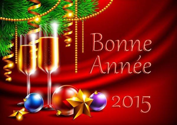 Bonne et heureuse année 2015 à toutes et à tous  :)