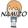 RP-Namizo