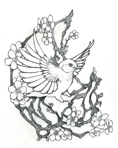 Fleurs de cerisier tatouage - Dessin fleur de cerisier ...