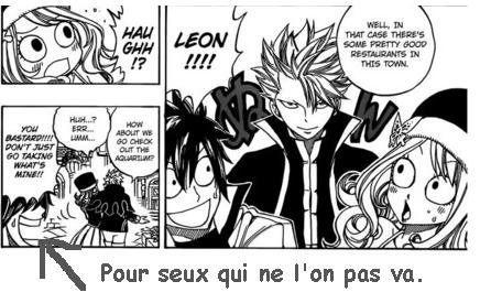 Les couples de Fairy Tail.