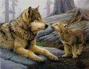 Photo de vivre-avec-les-loups