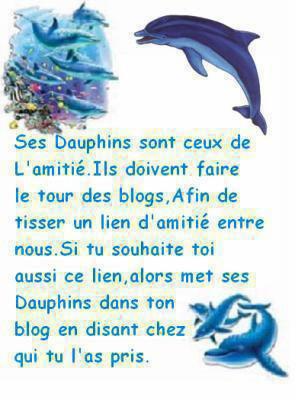 ma passion les dauphin
