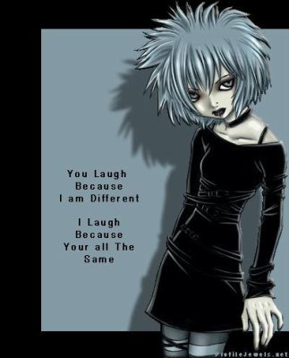 you  laugh because i'm diffrent......i laugh because you're all the same!!!!!!